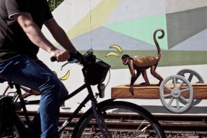 Affe_Nordbahntrasse_wuppertal_Radfahrer